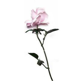 Fleurs en plastique rose pâle