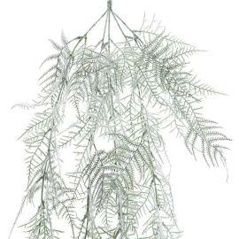 Branche de fougère givré