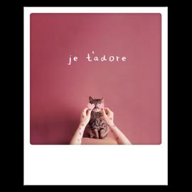 Carte postale polaroid je t'adore
