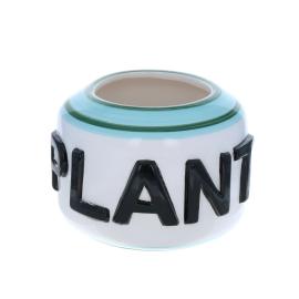 Cache pot Plant