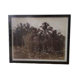 cadre jungle noir et blanc