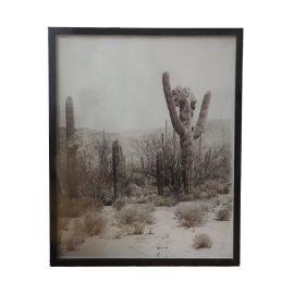 Cadre cactus noir et blanc