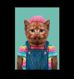 """Carte """"zoo portrait"""" chat à bonnet"""