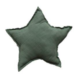 Coussin étoile vert