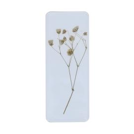 Fleurs jaune inclusion sous resine