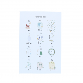 Lot de 12 cartes Première annee de bebe