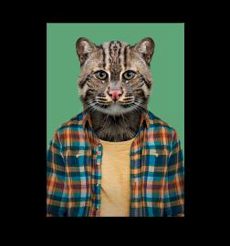 """Carte """"zoo portrait"""" Chat"""