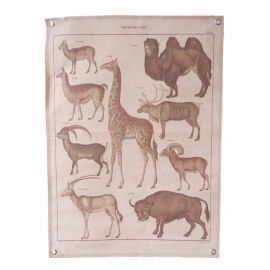 Poster en tissu animaux sauvages