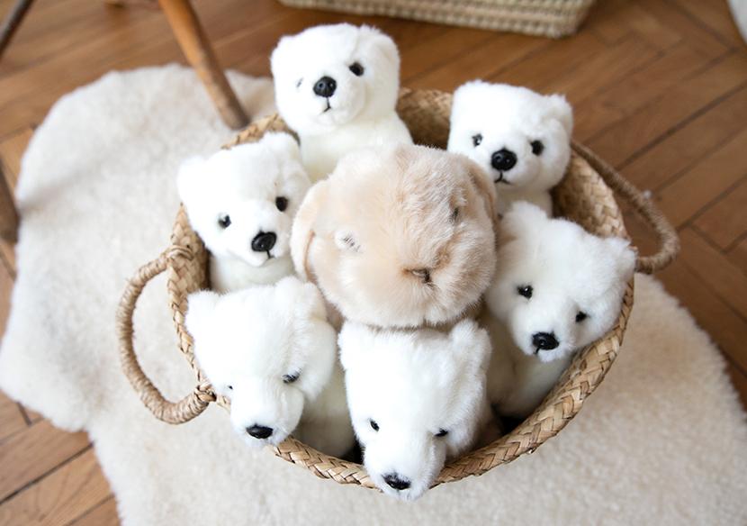 bandeau-page-conseil-peluche-ours